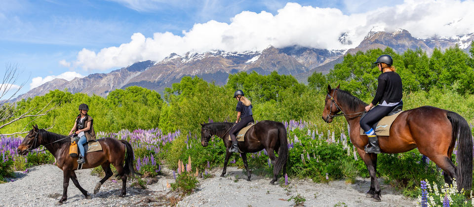 Dart Stables has been operating for over 20 years. With more than 50 exceptional horses and a passionate team of experienced guides, our horse treks deliver a truly once in a lifetime experience, even if you have never ridden before.