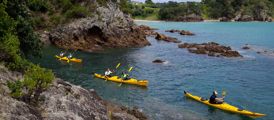 Sea Kayaking in Auckland