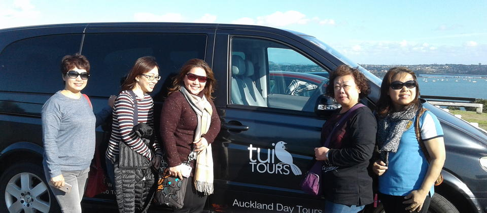 Auckland City and Maori Cultural Tour