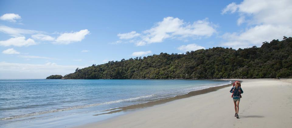 Rakiura Track, Maori Beach_Photo B Maryns.jpg