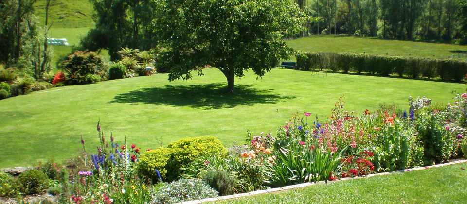 Half an acre of lawn you can play games on or relax under our huge walnut tree