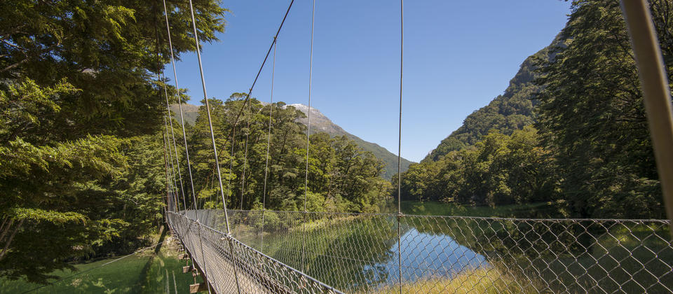 Milford Track - Day walk with Ultimate Hikes