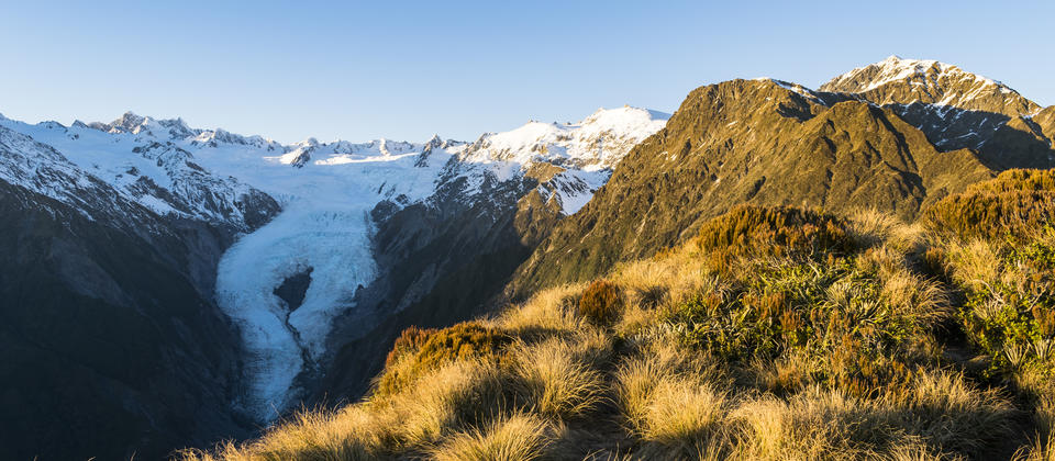 Franz Josef Glacier from Alex Knob