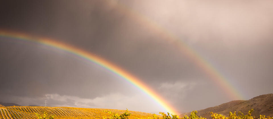 Ceres Wines - Double autumn rainbow