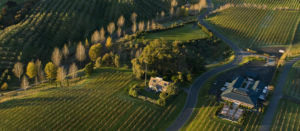 Black Barn Vineyards, Rush Cottage, Black Barn Retreat, Gowers Market, Amphitheatre, Cellar Door, Kitchen and Bistro