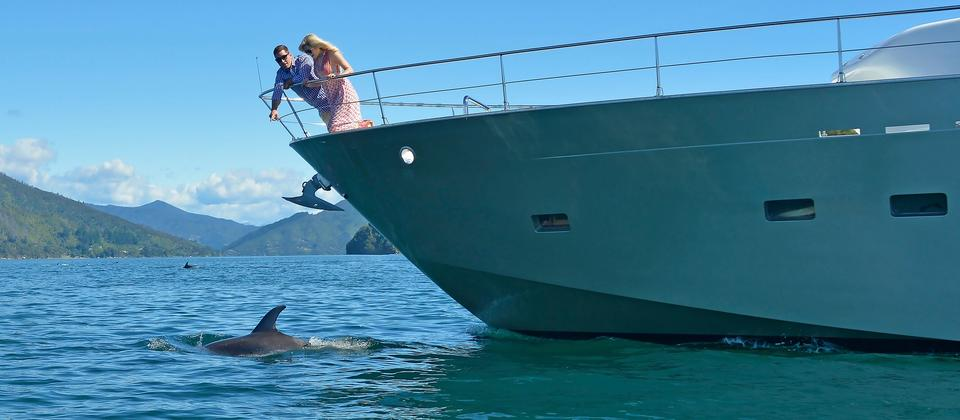 Private cruise launch in the Marlborough Sounds