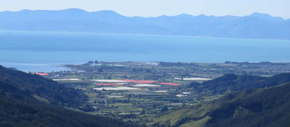 Tasman Bay from Hawkes lookout