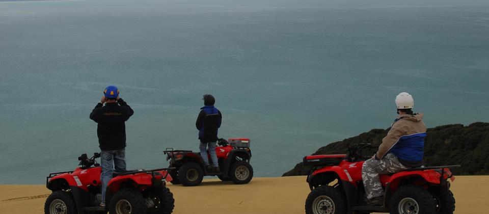 Quad bikes on 90 Mile Beach