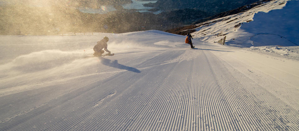 Fresh Cord. First Tracks.