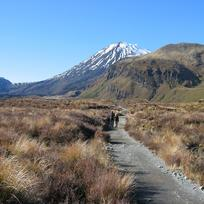 Tongariro Alpine Crossing start