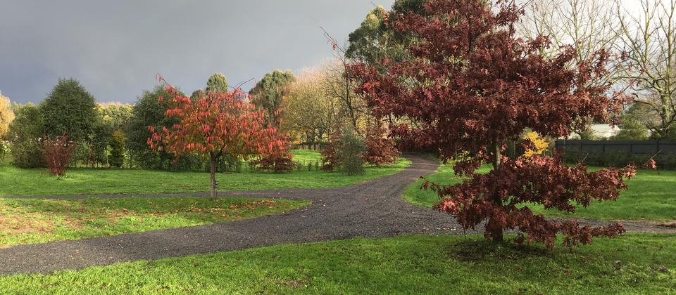beautiful park like surroundings with autumn colours against the dark skies of winter