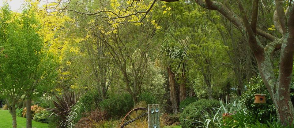 Spring at Kahikatea Gardens, a New Zealand Country Garden