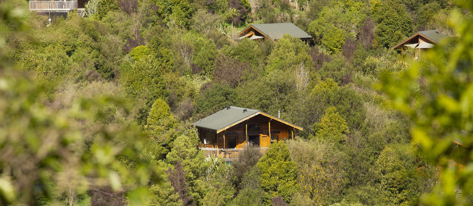 Bush Lodges and Bush Chalets
