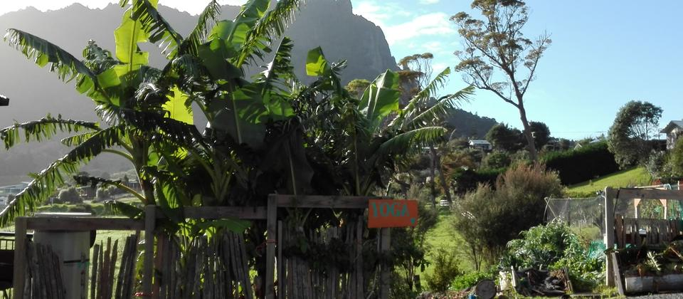 Mount Manaia at your doorstep
