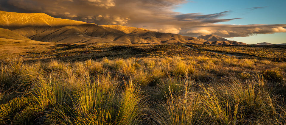 Otago Autumn Colours Photography Workshop.jpg