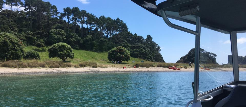 Roberton Island, Bay of Islands