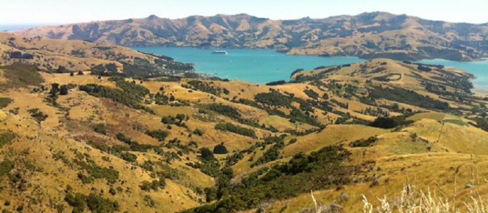 A large cruise boat lies at anchor in Akaroa Harbour.