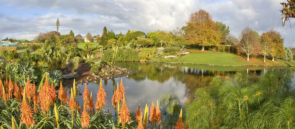 Auckland Botanic Gardens Upper Lake in the autumn