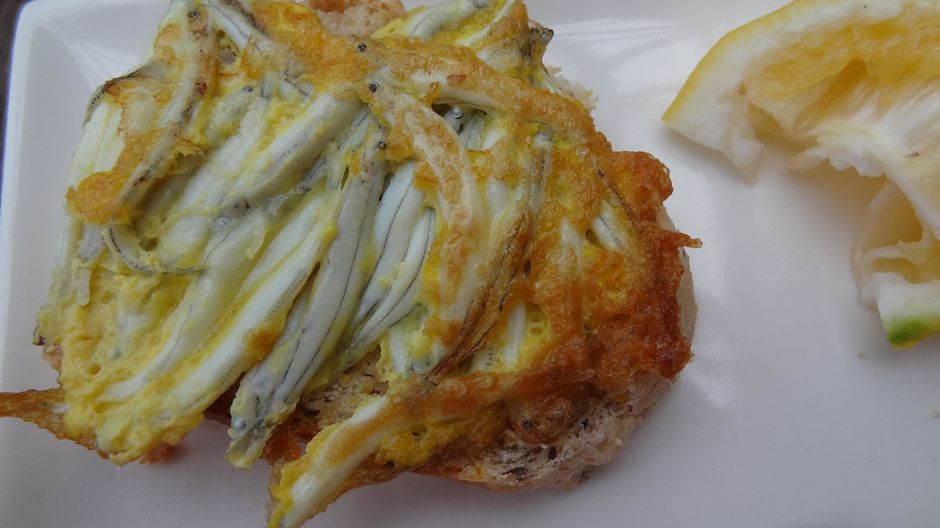 A classic New Zealand whitebait fritter.