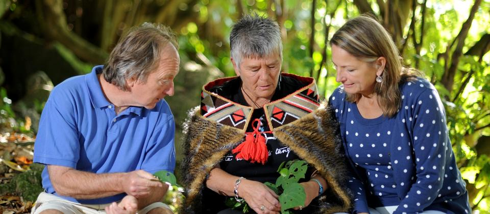 Walk with the Ancestors Tour - medicinal plants from the bush