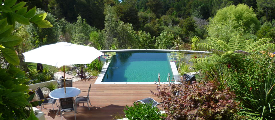 Pool, deck & garden view