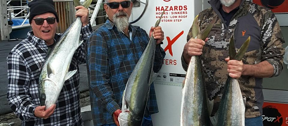 SpotX Fishing Charter Bay of Islands Kingfish 190914.jpg
