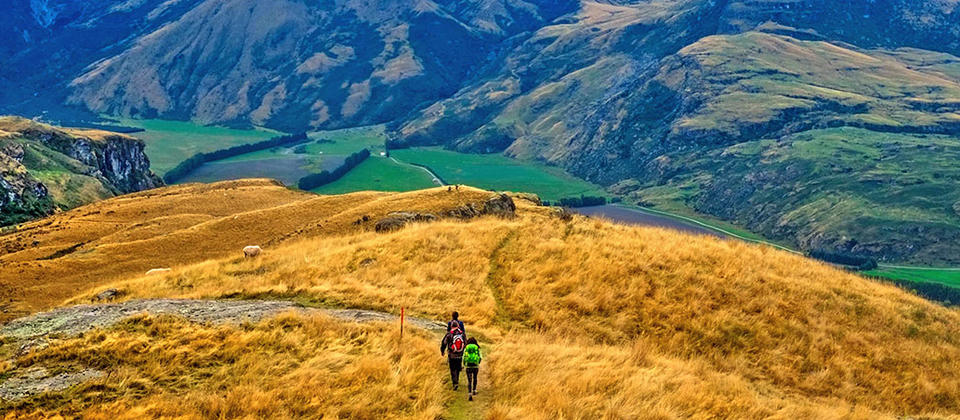WNZQ-newzealand-walking-hiking-tour.jpg