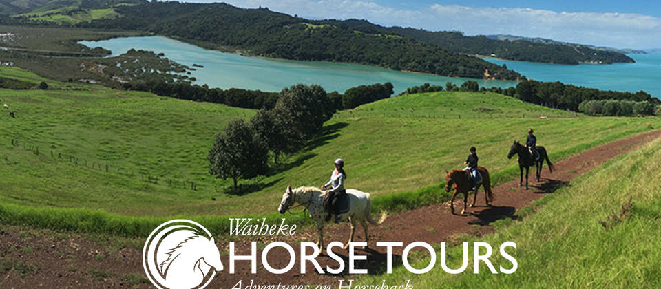 Enjoy the spectacular Views of Waihekes Far End on our beautiful horses
