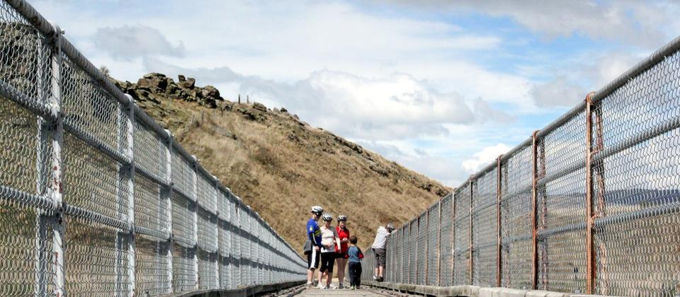 Otago Central Rail Trail - Summer