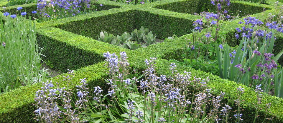 Spring in the Knot Garden