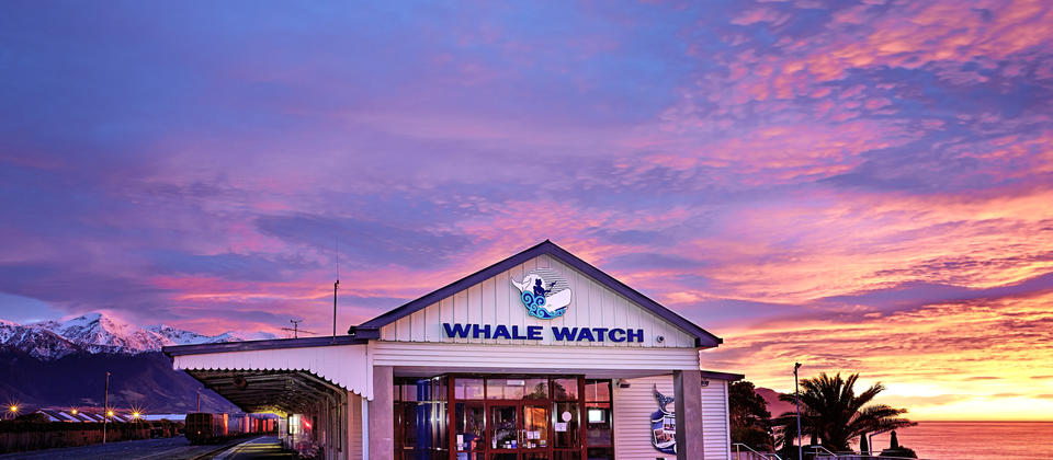 The Whaleway Station at Dawn