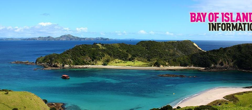 Bright blue day in the Bay of Islands