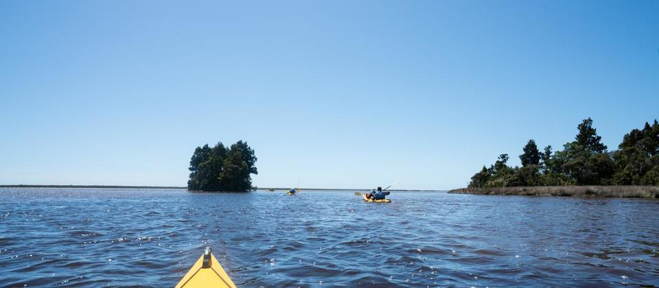 okarito-kayaking-MP-rezdy.jpg