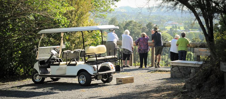 Golf Cart Tours available - bookings essential