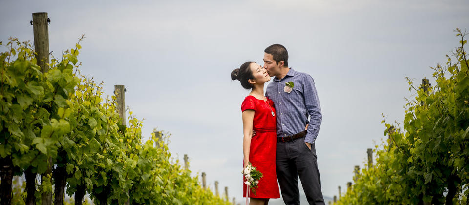 Romantic short escapes to the wine regions -amongst the vines at The Marlborough Lodge