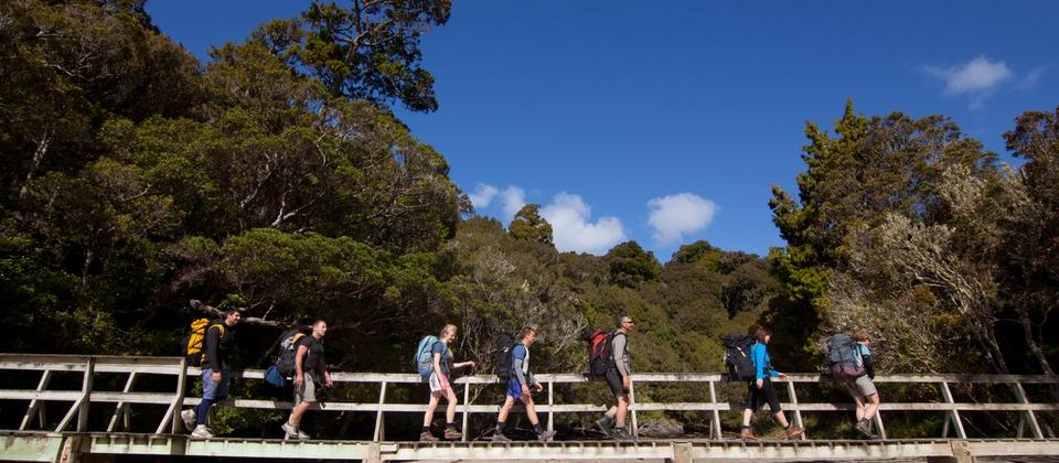 Rakiura Track_Photo DOC-90 Seconds.jpg