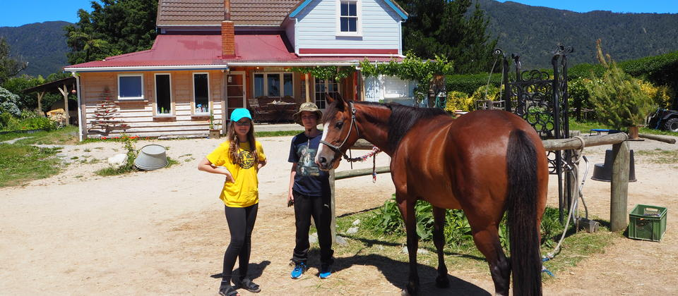 Horse Farm, Camping and Horse Riding Hack'n Stay Golden Bay, Abel Tasman New Zealand