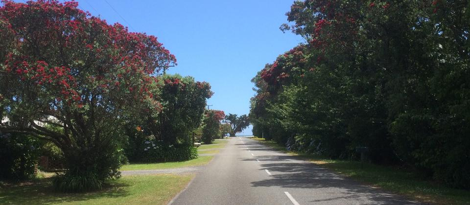 Road to Carters Beach