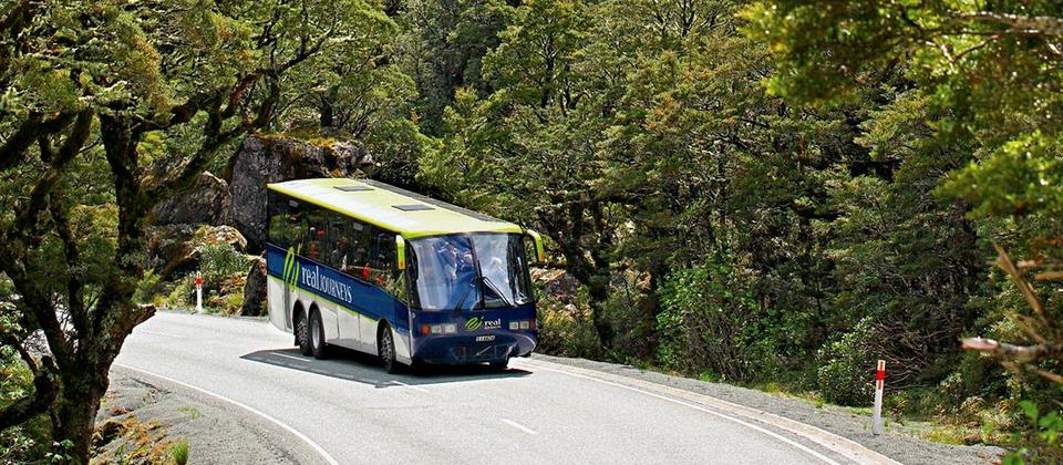 Doubtful Sound Wilderness Cruises (from Queenstown) - Real Journeys