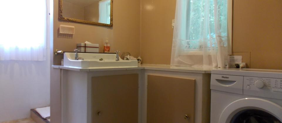 Shower/vanity area