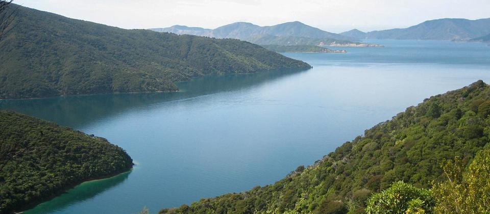 marlborough-sounds-MP-rezdy.jpg