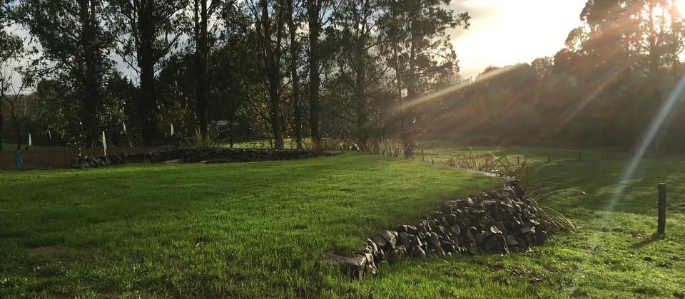 the first sun's rays over paddocks