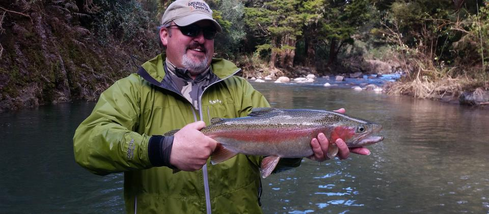 Wilderness Sight Fishing for Rising Rainbow Trout