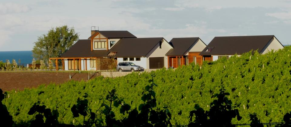 002_Pine_Hill_Lodge_from_Vineyard.jpg