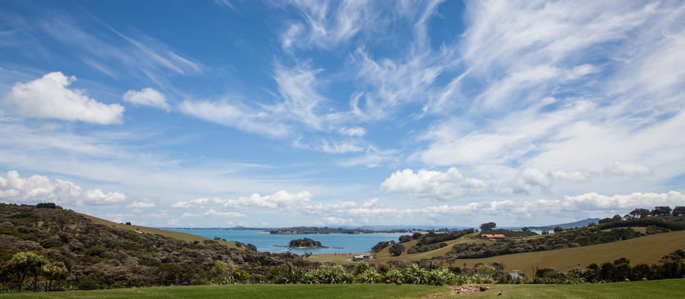 cable-bay-vineyards-waiheke-1.jpg