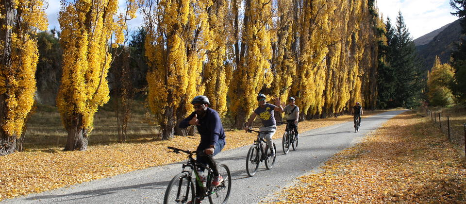Arrow River Trail Half Day Supported Tour