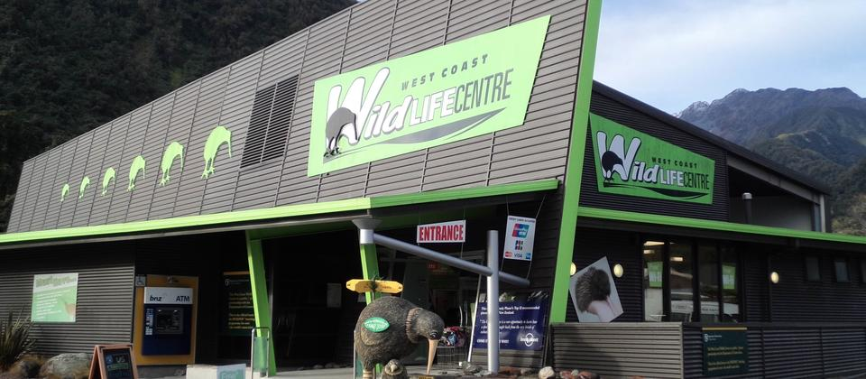 "Look out for the bright "" Green "" building in Franz Josef !"
