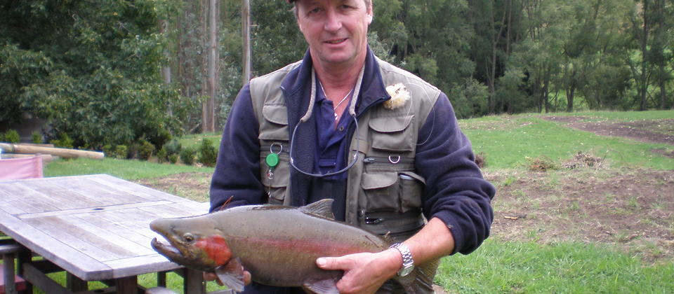 Catch trophy size brown or rainbow trout at the bottom of the garden
