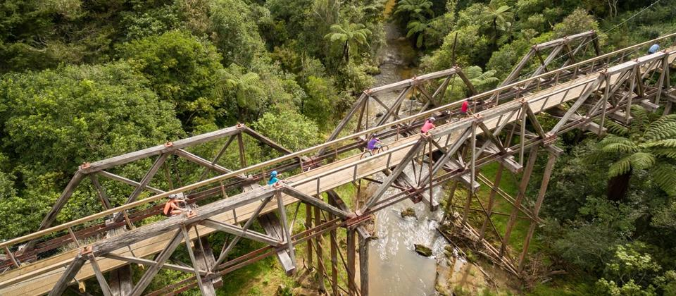 Suspension Bridges on the cycle trail