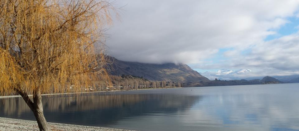 Autumn colours at Lake Wanaka